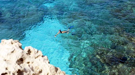 Snorkeling i Fig Tree Bay