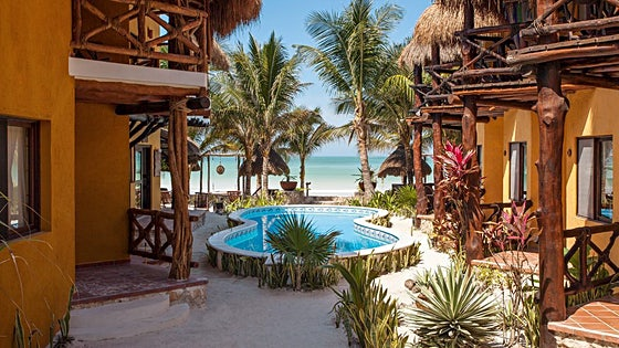 Holbox Dreams